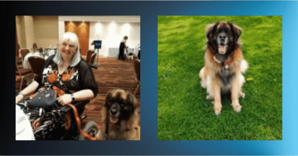 SuperDog Doris and wheelchair-bound owner Lorraine