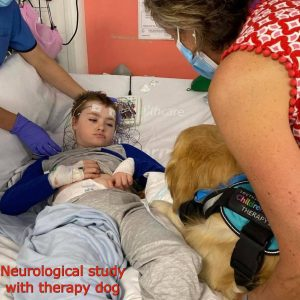 Noah in neuro with therapy dog